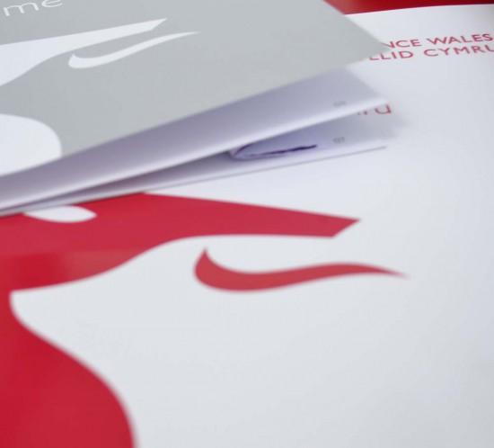 portfolio-featured-finance-wales